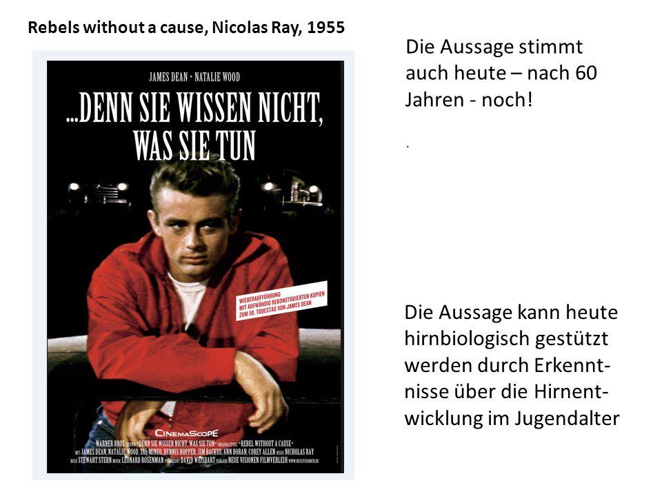Rebels without a cause, Nicolas Ray, 1955 Die Aussage stimmt auch heute – nach 60 Jahren - noch!.