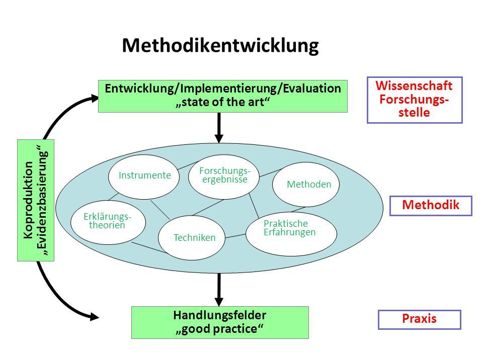 "Wissenschaft Forschungs- stelle Methodik Praxis Entwicklung/Implementierung/Evaluation ""state of the art"" Forschungs- ergebnisse Erklärungs- theorien"