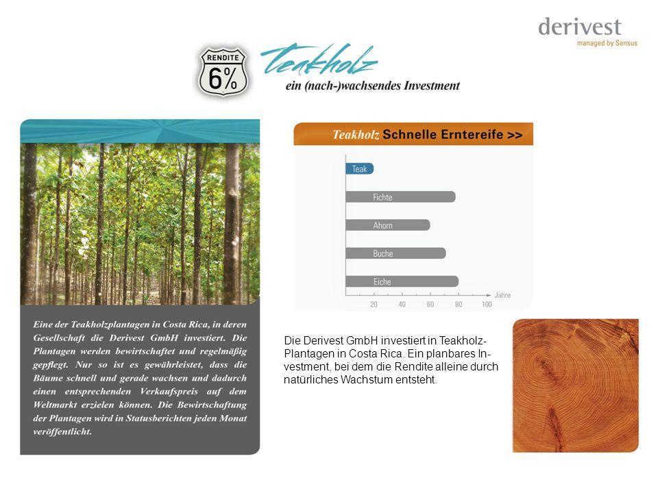 Die Derivest GmbH investiert in Teakholz- Plantagen in Costa Rica. Ein planbares In- vestment, bei dem die Rendite alleine durch natürliches Wachstum