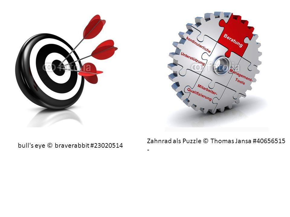 bull's eye © braverabbit #23020514 Zahnrad als Puzzle © Thomas Jansa #40656515 - Unterstützung Mitarbeiter- Qualifizierung Beratung Management- Tools