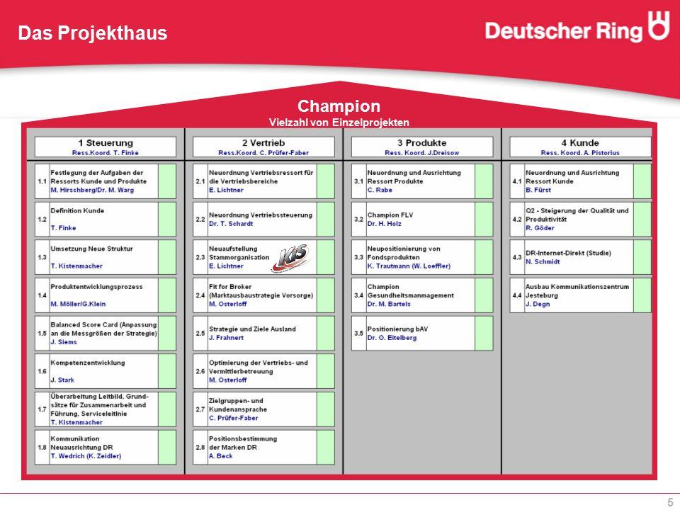 5 Das Projekthaus Champion Vielzahl von Einzelprojekten
