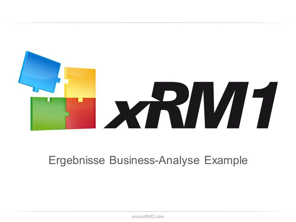 www.xRM1.com Ergebnisse Business-Analyse Example