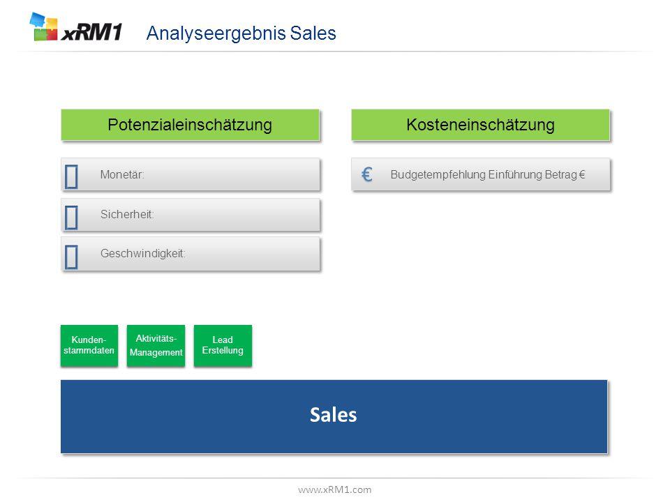 """www.xRM1.com Betrachtungsebene, Z.B. """"Datenmodell"""" Analyseergebnis Sales Monetär: Sicherheit: Geschwindigkeit: Budgetempfehlung Einführung Betrag € Po"""