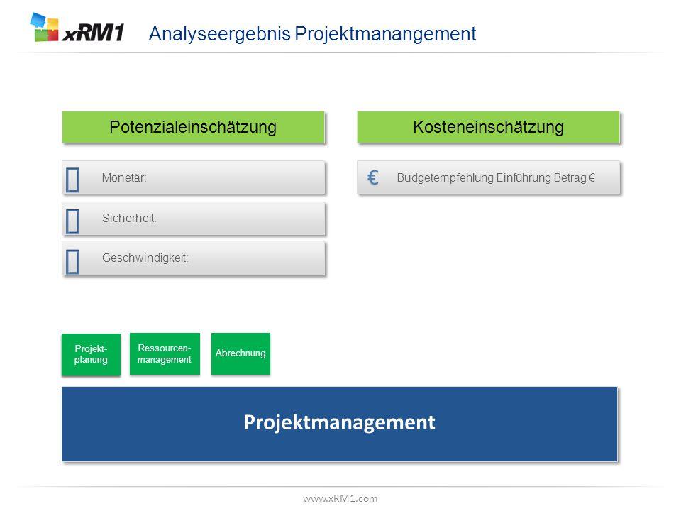 "www.xRM1.com Betrachtungsebene, Z.B. ""Datenmodell"" Analyseergebnis Projektmanangement Potenzialeinschätzung Kosteneinschätzung Projektmanagement Proje"
