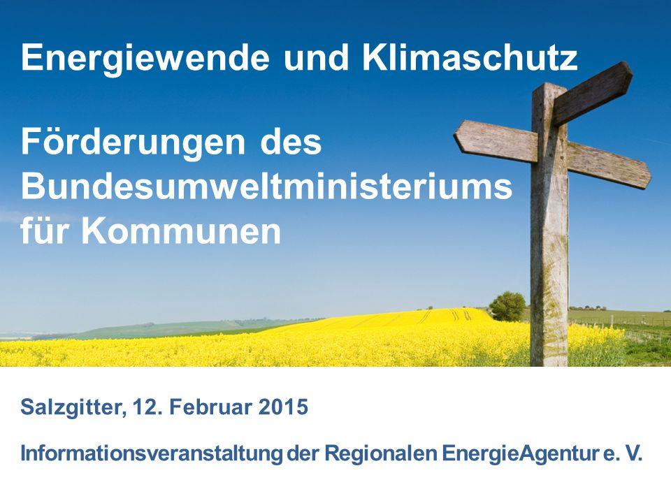 Förderungen des Bundesumweltministeriums für Kommunen Salzgitter, 12. Februar 2015 Informationsveranstaltung der Regionalen EnergieAgentur e. V. Energ
