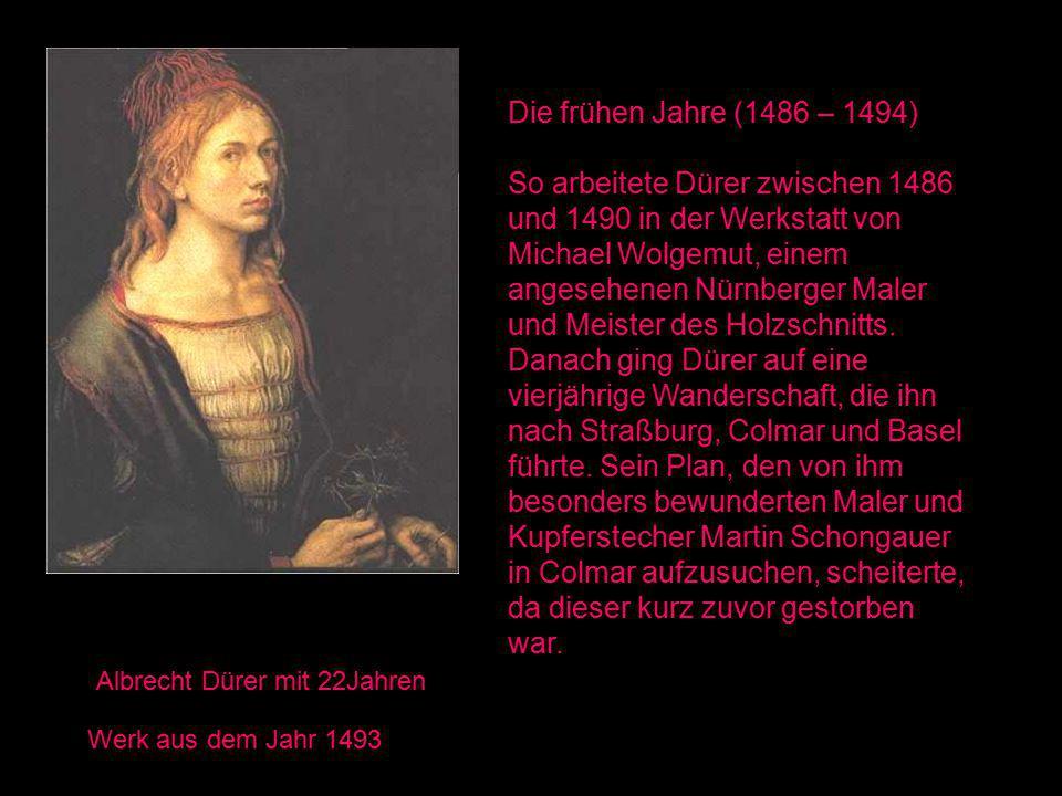 Albrecht Dürer mit 22Jahren Werk aus dem Jahr 1493 Die frühen Jahre (1486 – 1494) So arbeitete Dürer zwischen 1486 und 1490 in der Werkstatt von Michael Wolgemut, einem angesehenen Nürnberger Maler und Meister des Holzschnitts.