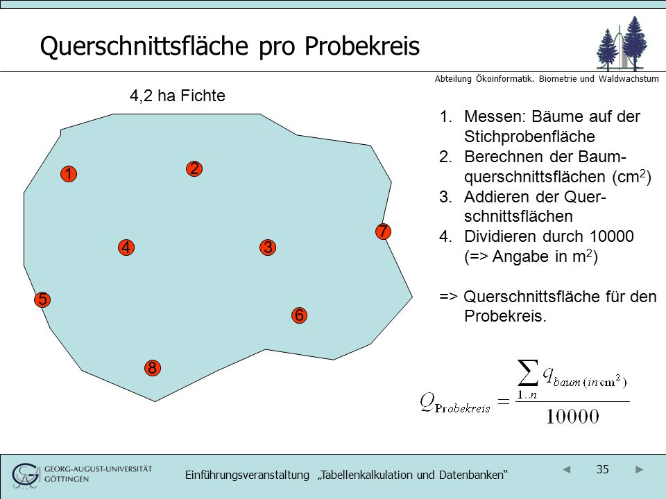 35 Abteilung Ökoinformatik. Biometrie und Waldwachstum Querschnittsfläche pro Probekreis 4,2 ha Fichte 1 1.Messen: Bäume auf der Stichprobenfläche 2.B
