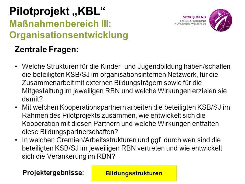 """Pilotprojekt """"KBL"""" Maßnahmenbereich III: Organisationsentwicklung Zentrale Fragen: Welche Strukturen für die Kinder- und Jugendbildung haben/schaffen"""