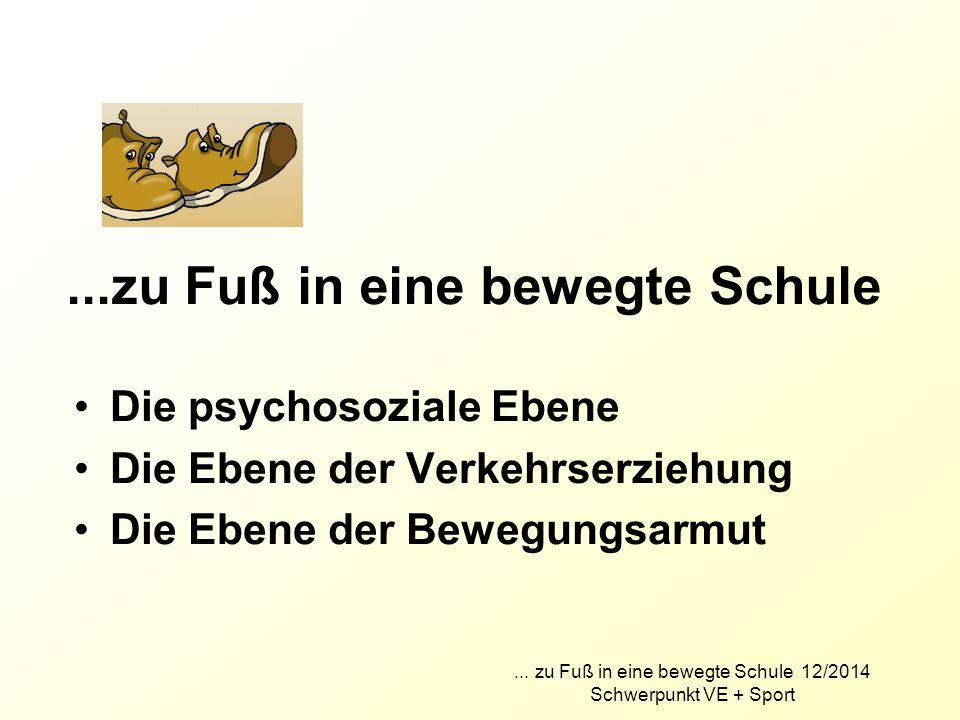 Die psychosoziale Ebene Die Ebene der Verkehrserziehung Die Ebene der Bewegungsarmut... zu Fuß in eine bewegte Schule 12/2014 Schwerpunkt VE + Sport