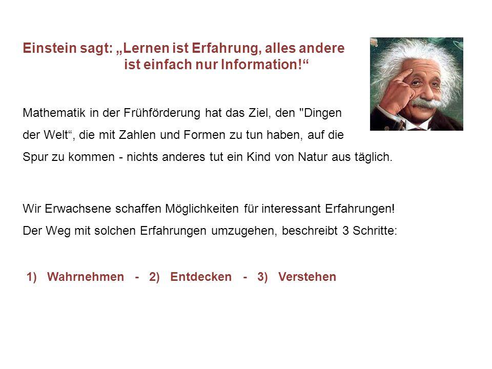 """Einstein sagt: """"Lernen ist Erfahrung, alles andere ist einfach nur Information! Mathematik in der Frühförderung hat das Ziel, den Dingen der Welt , die mit Zahlen und Formen zu tun haben, auf die Spur zu kommen - nichts anderes tut ein Kind von Natur aus täglich."""