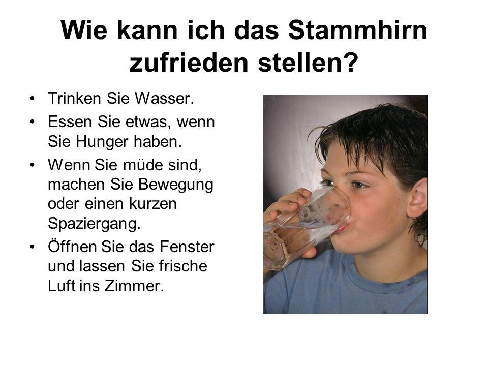 Wie kann ich das Stammhirn zufrieden stellen? Trinken Sie Wasser. Essen Sie etwas, wenn Sie Hunger haben. Wenn Sie müde sind, machen Sie Bewegung oder
