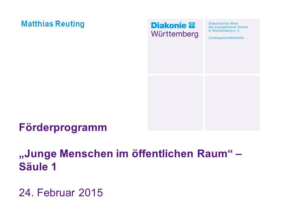 """Förderprogramm """"Junge Menschen im öffentlichen Raum"""" – Säule 1 24. Februar 2015 Matthias Reuting"""