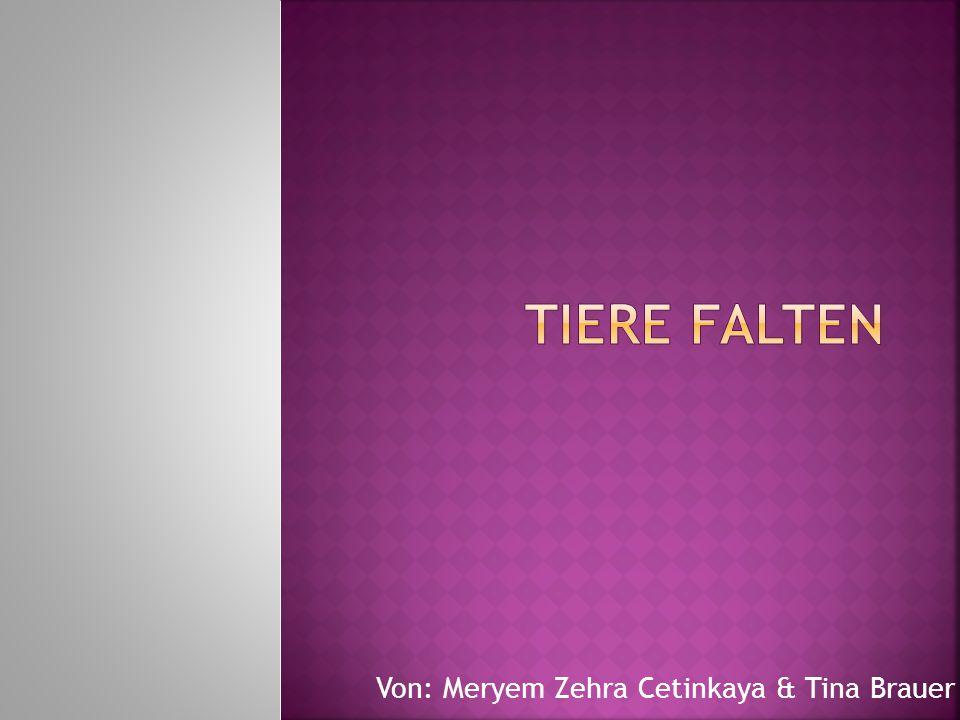 Von: Meryem Zehra Cetinkaya & Tina Brauer
