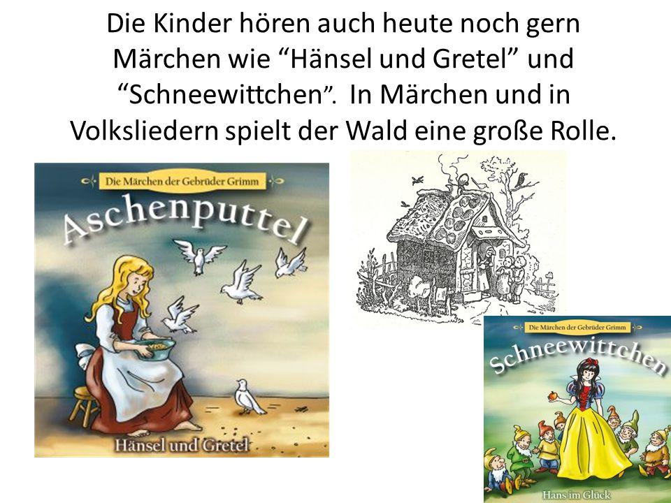 """Die Kinder hören auch heute noch gern Märchen wie """"Hänsel und Gretel"""" und """"Schneewittchen """". In Märchen und in Volksliedern spielt der Wald eine große"""