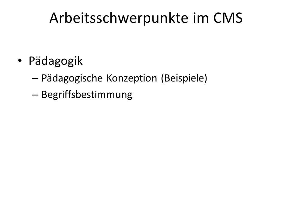 Arbeitsschwerpunkte im CMS Pädagogik – Pädagogische Konzeption (Beispiele) – Begriffsbestimmung