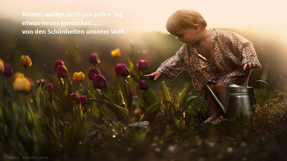 Kinder haben keine grossen Wünsche, sie wollen nur Kind sein dürfen.