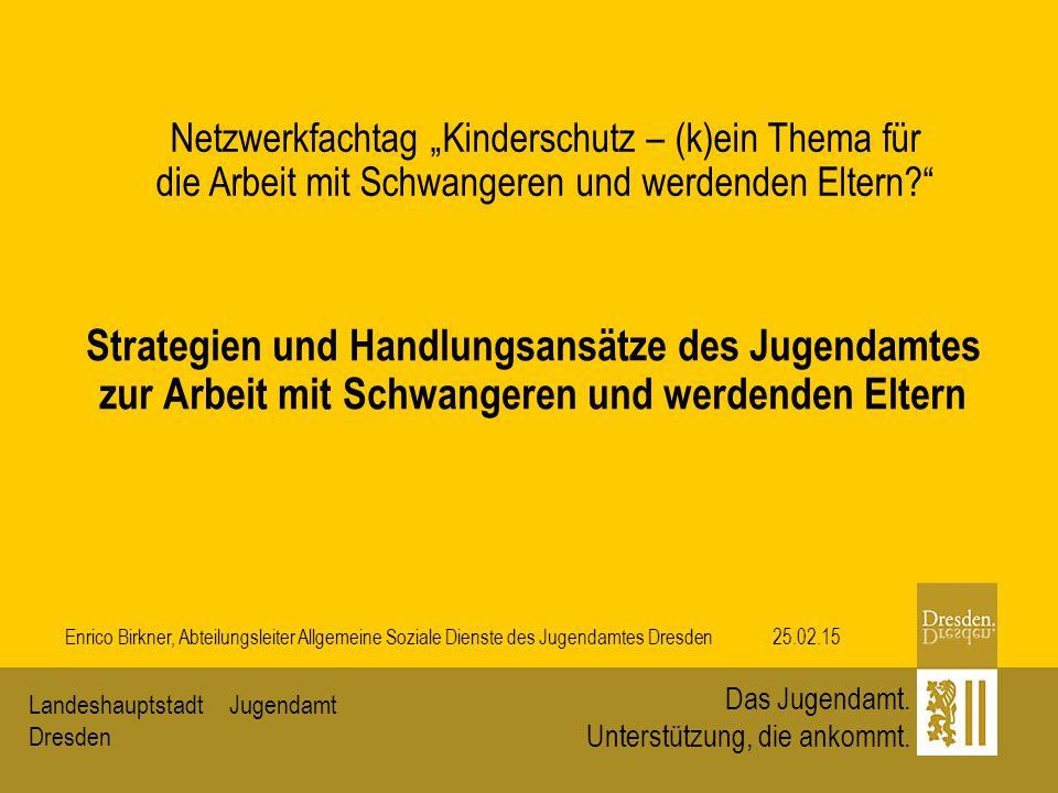 JugendamtLandeshauptstadt Dresden Das Jugendamt. Unterstützung, die ankommt. Strategien und Handlungsansätze des Jugendamtes zur Arbeit mit Schwangere