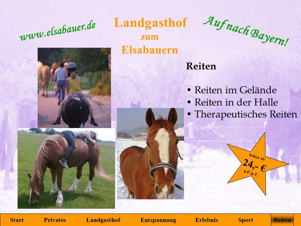 Landgasthof zum Elsabauern Start Privates Landgasthof Entspannung Erlebnis Sport Reiten www.elsabauer.de Auf nach Bayern! Reiten Reiten im Gelände Rei