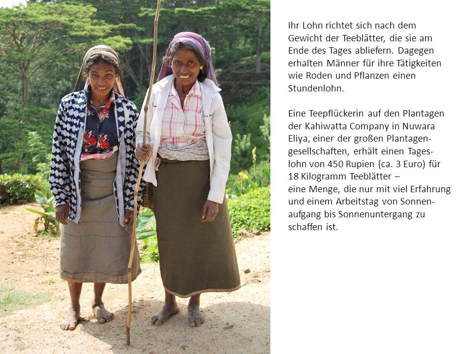 Ihr Lohn richtet sich nach dem Gewicht der Teeblätter, die sie am Ende des Tages abliefern. Dagegen erhalten Männer für ihre Tätigkeiten wie Roden und