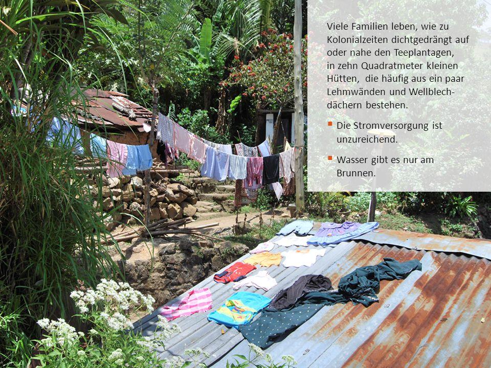 Viele Familien leben, wie zu Kolonialzeiten dichtgedrängt auf oder nahe den Teeplantagen, in zehn Quadratmeter kleinen Hütten, die häufig aus ein paar
