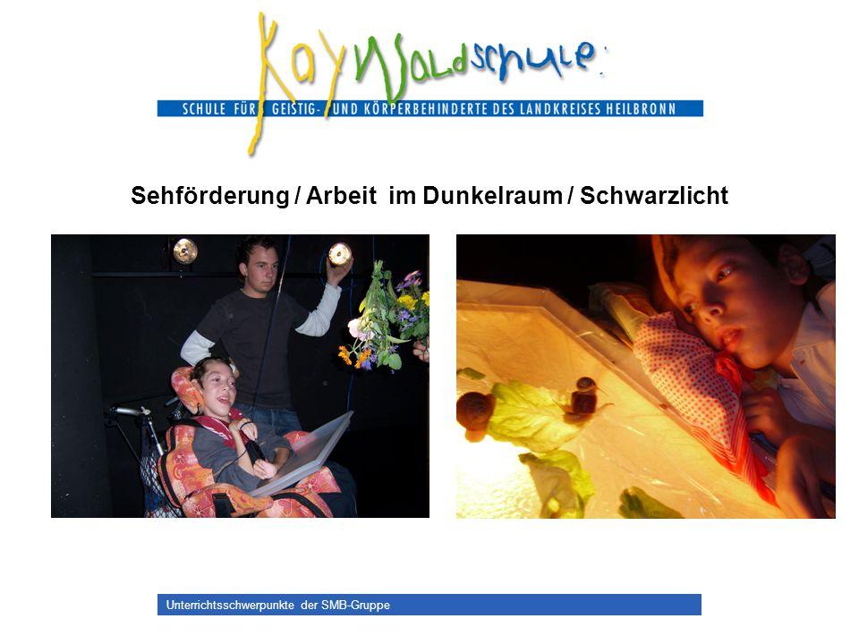 Unterrichtsschwerpunkte der SMB-Gruppe Sehförderung / Arbeit im Dunkelraum / Schwarzlicht