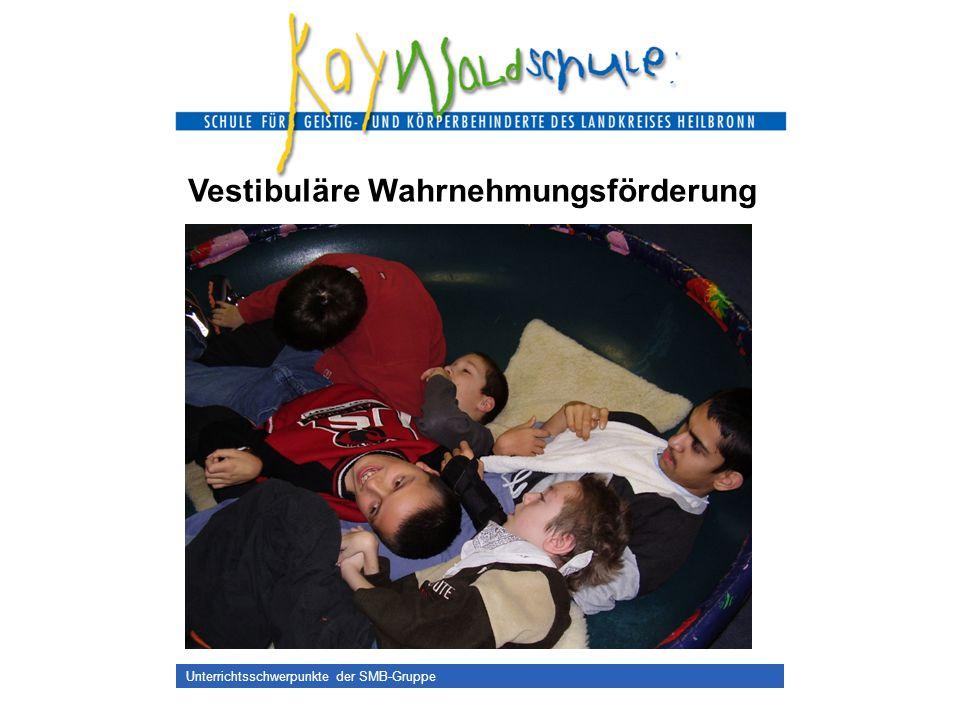 Unterrichtsschwerpunkte der SMB-Gruppe Vestibuläre Wahrnehmungsförderung