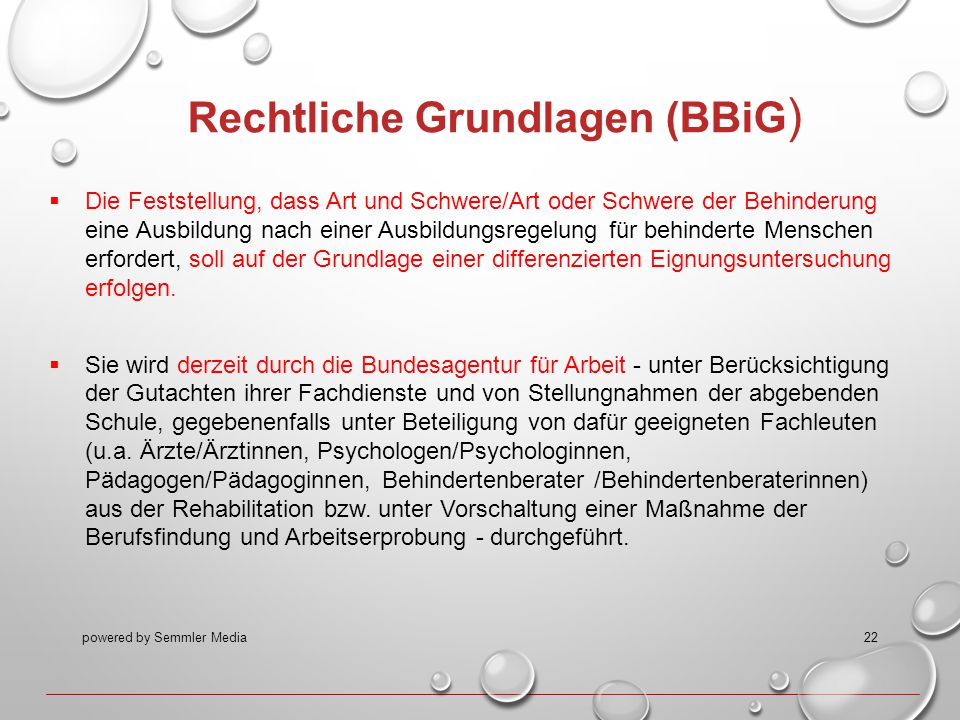 powered by Semmler Media22 Rechtliche Grundlagen (BBiG )  Die Feststellung, dass Art und Schwere/Art oder Schwere der Behinderung eine Ausbildung nac