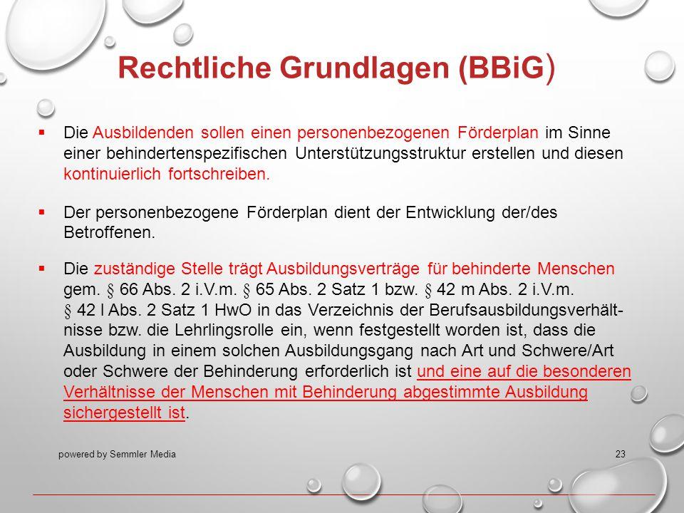 powered by Semmler Media23 Rechtliche Grundlagen (BBiG )  Die Ausbildenden sollen einen personenbezogenen Förderplan im Sinne einer behindertenspezif