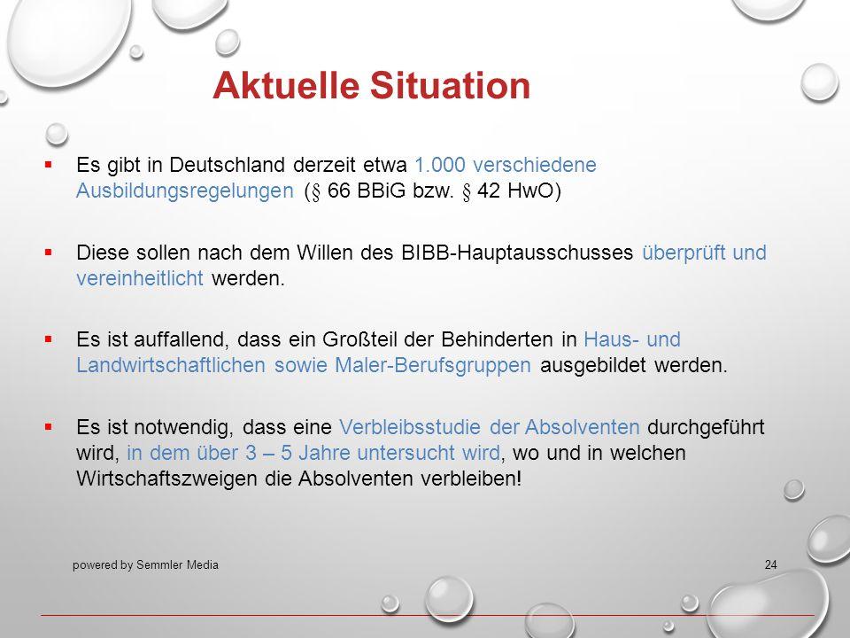 powered by Semmler Media24 Aktuelle Situation  Es gibt in Deutschland derzeit etwa 1.000 verschiedene Ausbildungsregelungen (§ 66 BBiG bzw. § 42 HwO)