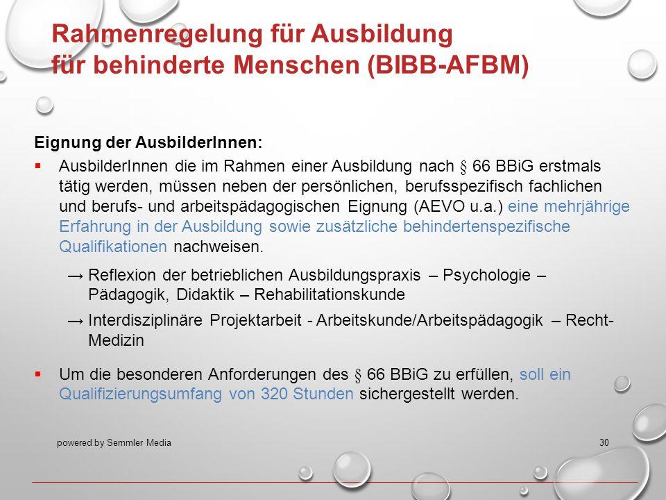 powered by Semmler Media30 Rahmenregelung für Ausbildung für behinderte Menschen (BIBB-AFBM) Eignung der AusbilderInnen:  AusbilderInnen die im Rahme