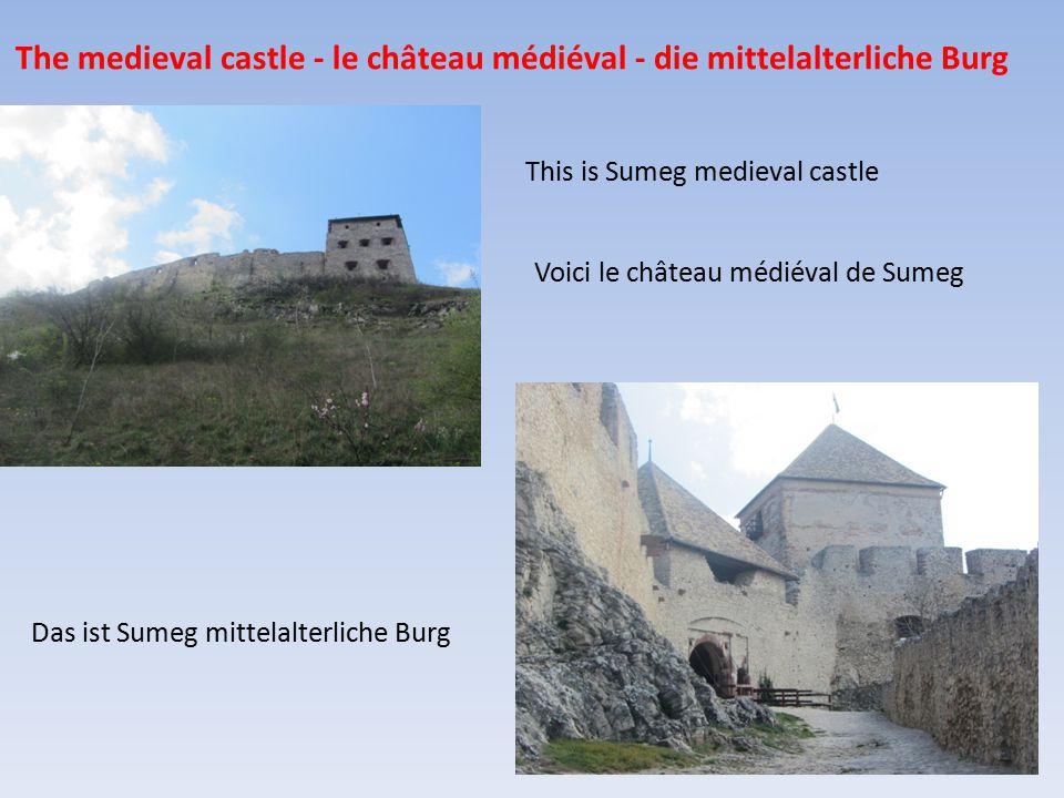 The medieval castle - le château médiéval - die mittelalterliche Burg Das ist Sumeg mittelalterliche Burg This is Sumeg medieval castle Voici le château médiéval de Sumeg