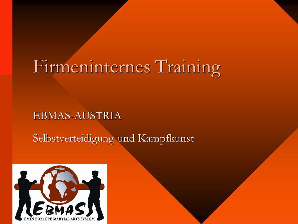 Firmeninternes Training EBMAS-AUSTRIA Selbstverteidigung und Kampfkunst