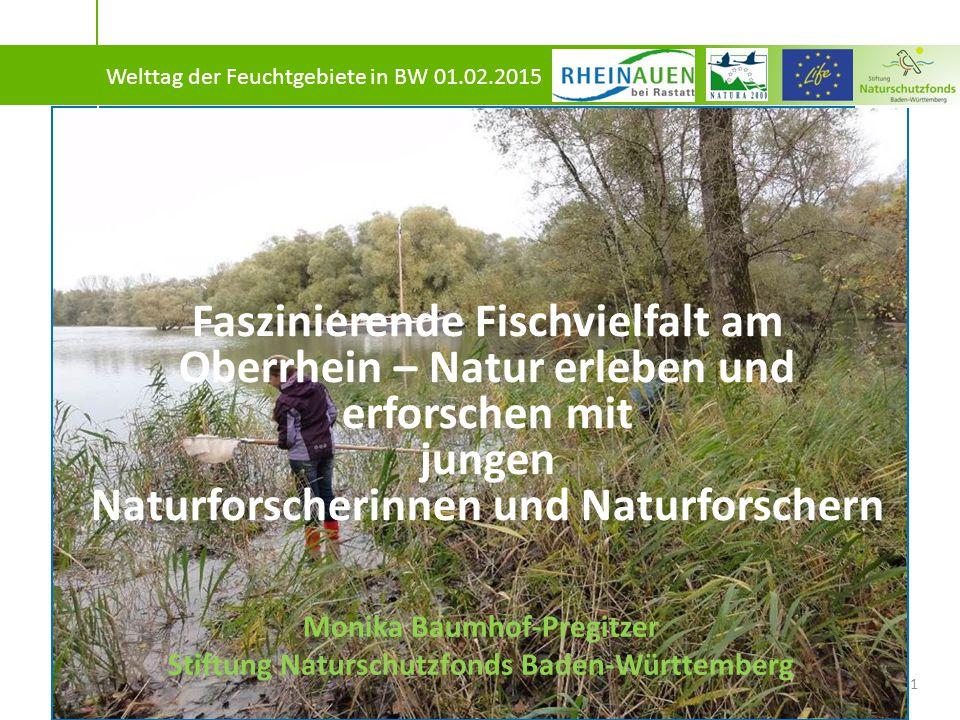 """Maßnahmen der Stiftung Naturschutzfonds BW als Partner im LIFE+-Projekt """"Rheinauen bei Rastatt : D.7."""