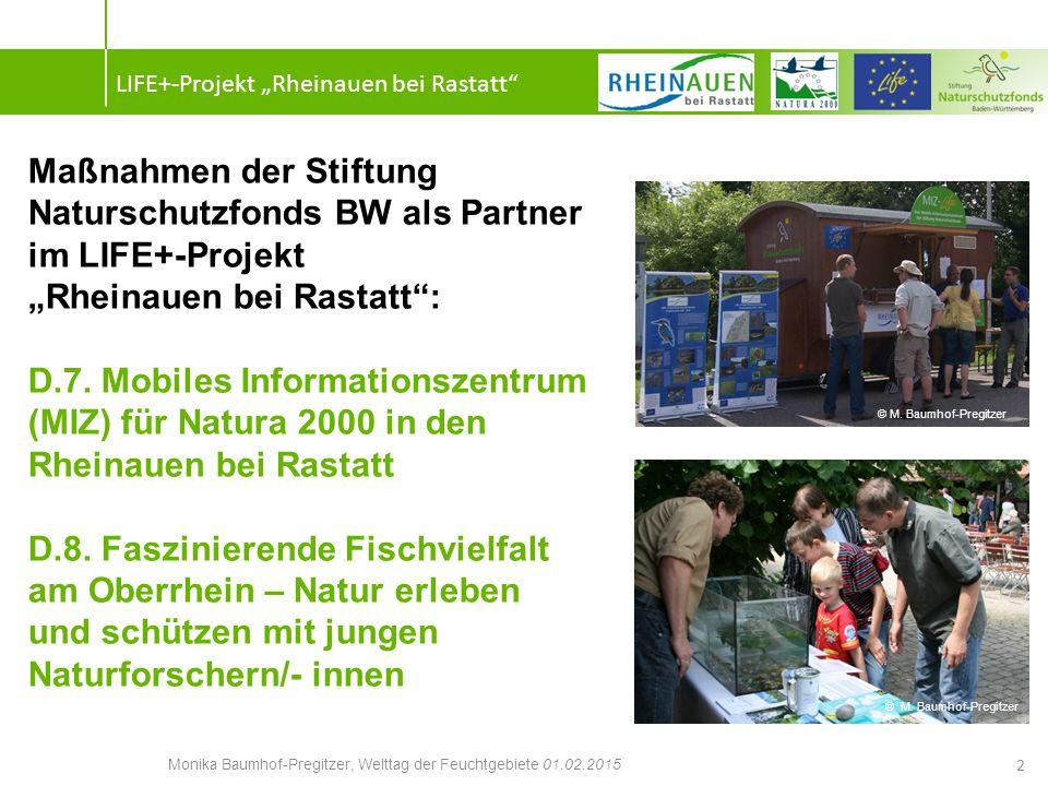 Ziele: Zur Förderung der Fischvielfalt und zur Intensivierung der Schutzbemühungen sowie zur Unterstützung der Maßnahmen im LIFE+-Projekt werden Bildungsmaßnahmen für junge NaturforscherInnen angeboten.