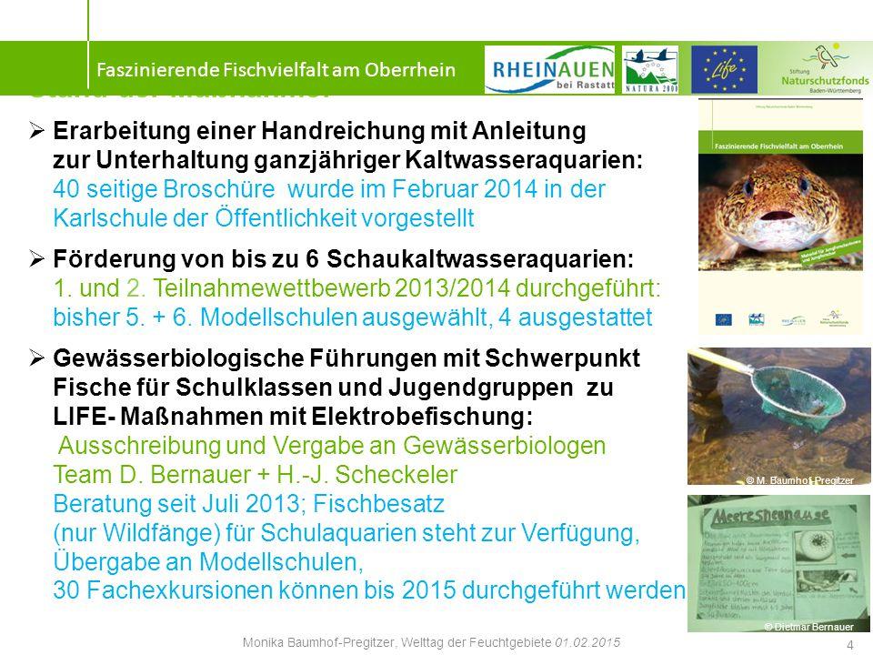 Vernetztes systemisches Denken 5 Faszinierende Fischvielfalt am Oberrhein Monika Baumhof-Pregitzer, Welttag der Feuchtgebiete 01.02.2015 © M.