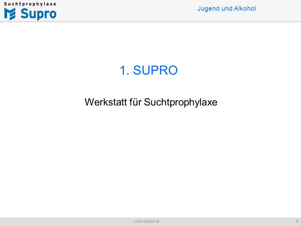 Jugend und Alkohol 4www.supro.at 1. SUPRO Werkstatt für Suchtprophylaxe
