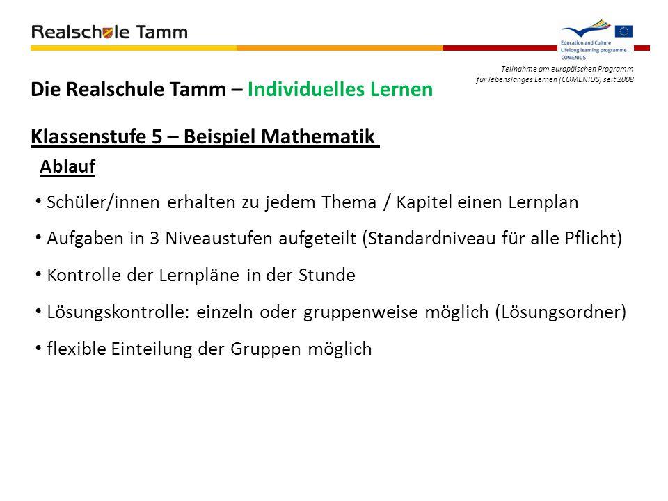 Teilnahme am europäischen Programm für lebenslanges Lernen (COMENIUS) seit 2008 Die Realschule Tamm – Individuelles Lernen Klassenstufe 5 – Beispiel M
