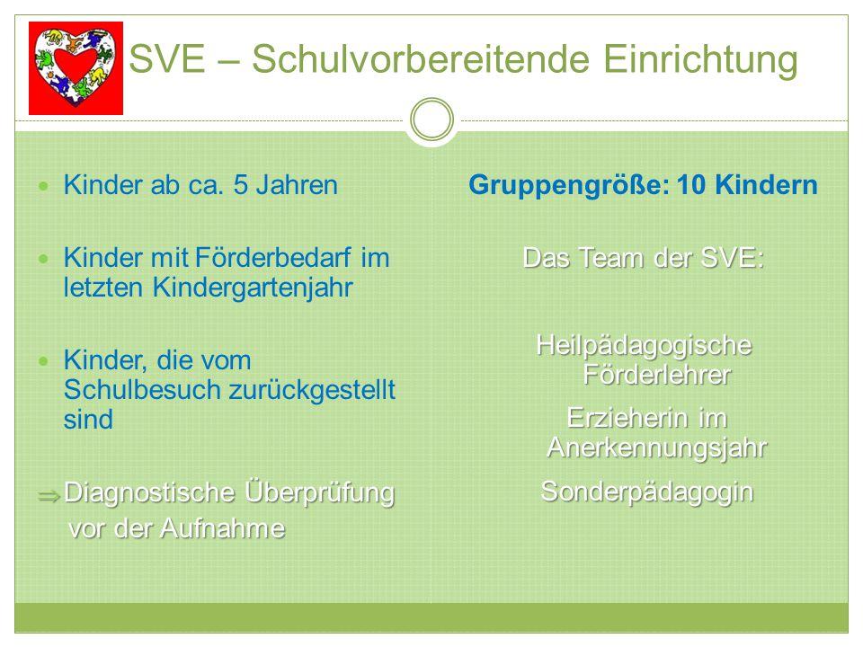 SVE – Schulvorbereitende Einrichtung Kinder ab ca. 5 Jahren Kinder mit Förderbedarf im letzten Kindergartenjahr Kinder, die vom Schulbesuch zurückgest