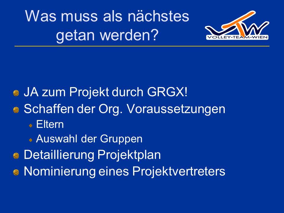 Was muss als nächstes getan werden? JA zum Projekt durch GRGX! Schaffen der Org. Voraussetzungen Eltern Auswahl der Gruppen Detaillierung Projektplan