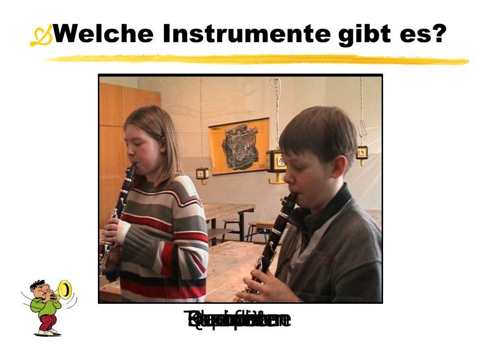 Welche Instrumente gibt es? Saxophone  PosaunenQuerflötenEuphonienTrompetenKlarinetten