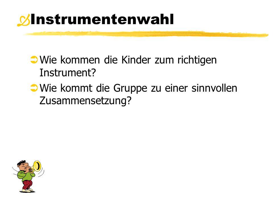 Instrumentenwahl  Wie kommen die Kinder zum richtigen Instrument?  Wie kommt die Gruppe zu einer sinnvollen Zusammensetzung? 