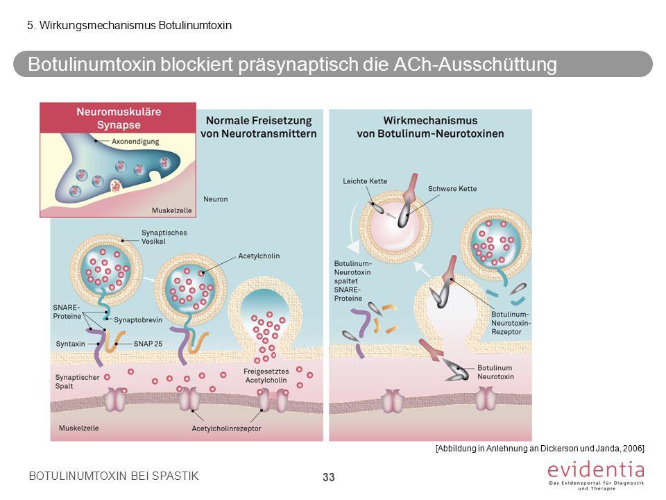 Botulinumtoxin blockiert präsynaptisch die ACh-Ausschüttung 33 5. Wirkungsmechanismus Botulinumtoxin BOTULINUMTOXIN BEI SPASTIK [Abbildung in Anlehnun