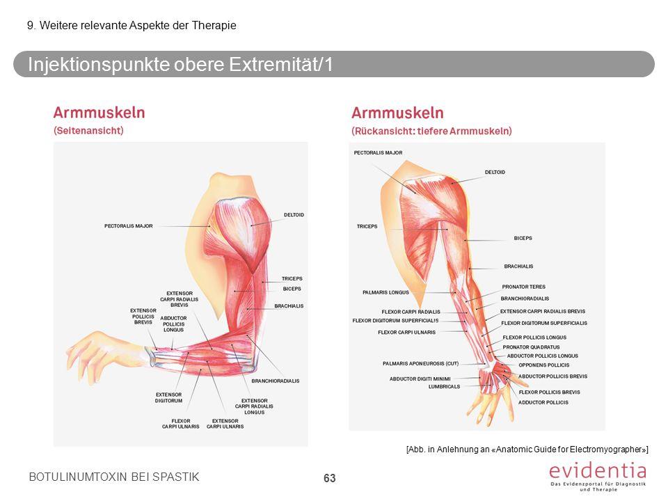Injektionspunkte obere Extremität/1 BOTULINUMTOXIN BEI SPASTIK 63 9. Weitere relevante Aspekte der Therapie [Abb. in Anlehnung an «Anatomic Guide for