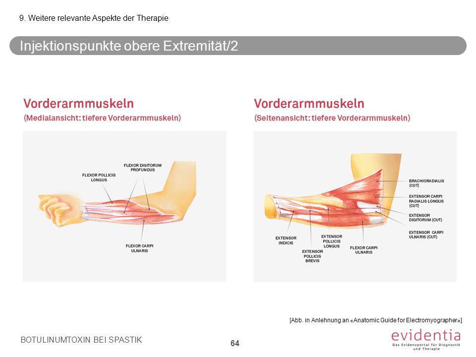 Injektionspunkte obere Extremität/2 BOTULINUMTOXIN BEI SPASTIK 9. Weitere relevante Aspekte der Therapie 64 [Abb. in Anlehnung an «Anatomic Guide for