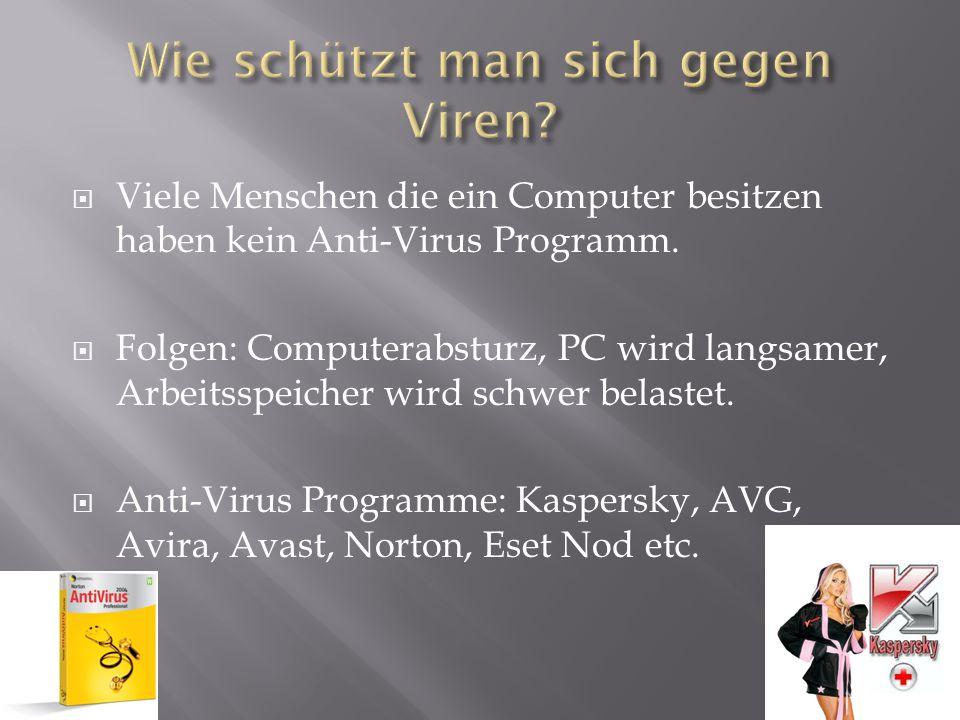  Viele Menschen die ein Computer besitzen haben kein Anti-Virus Programm.  Folgen: Computerabsturz, PC wird langsamer, Arbeitsspeicher wird schwer b