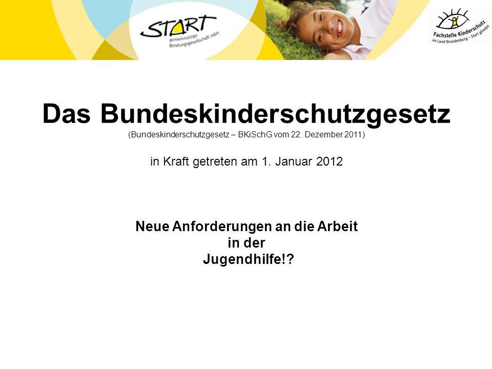 Das Bundeskinderschutzgesetz (Bundeskinderschutzgesetz – BKiSchG vom 22. Dezember 2011) in Kraft getreten am 1. Januar 2012 Neue Anforderungen an die