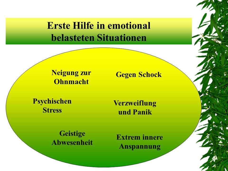 Erste Hilfe in emotional belasteten Situationen Psychischen Stress Gegen Schock Geistige Abwesenheit Extrem innere Anspannung Verzweiflung und Panik Neigung zur Ohnmacht