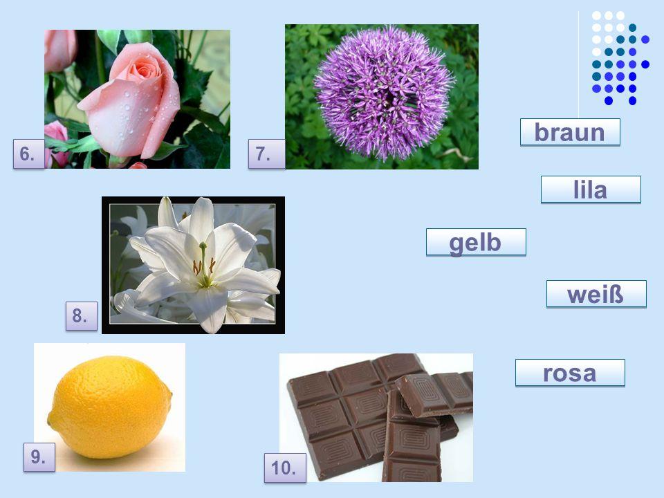 lila rosa weiß gelb braun 6. 7. 8. 9. 10.