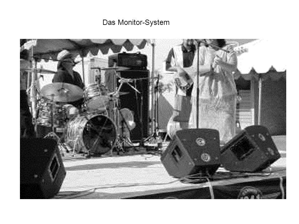 Das Monitor-System