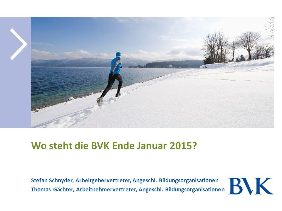 Wo steht die BVK Ende Januar 2015? Stefan Schnyder, Arbeitgebervertreter, Angeschl. Bildungsorganisationen Thomas Gächter, Arbeitnehmervertreter, Ange